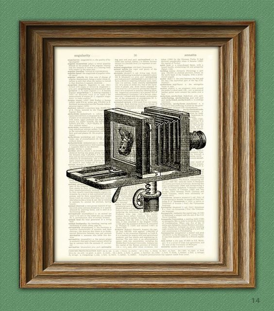 Cool BELLOWS CAMERA with womans face print over an by collageOrama, $6.99