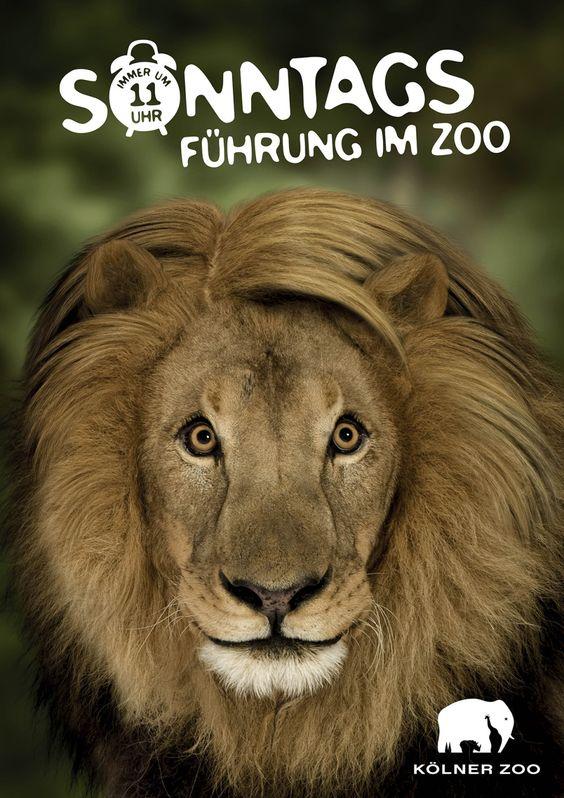Die Sonntagsführungen im Kölner Zoo
