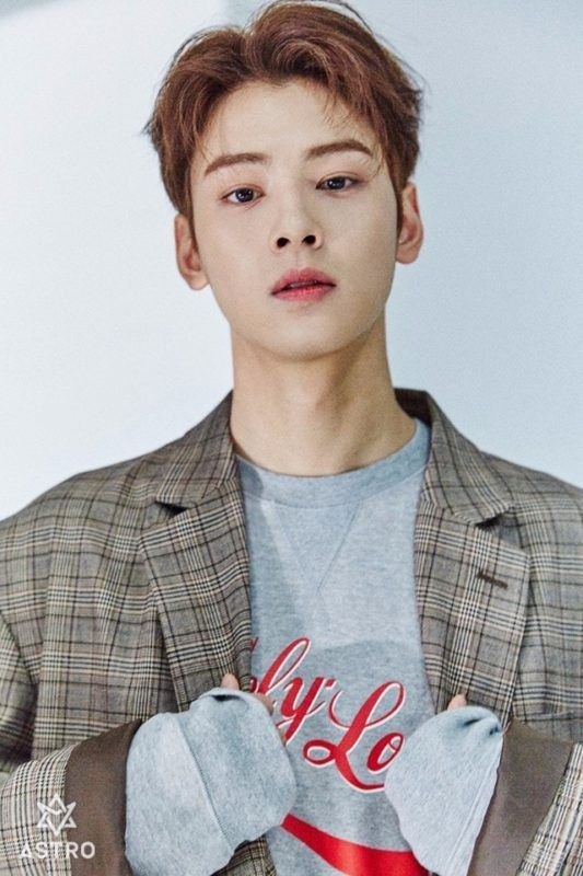 Astro Members Profile Updated Cha Eun Woo Cha Eun Woo Astro Eun Woo Astro The boy is well known for his handsome looks and tall figure. cha eun woo cha eun woo astro eun woo