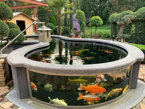 Above Ground Fish Pond Designs Lanzhome Com In 2020 Fish Ponds