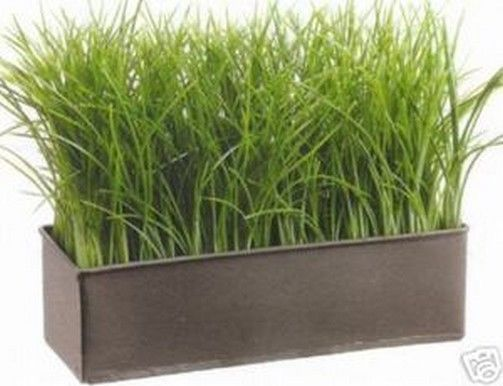 Details about arrangement artificial grass in outdoor for Tall ornamental grasses for pots