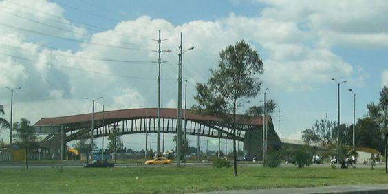 puente de guadua -bogota