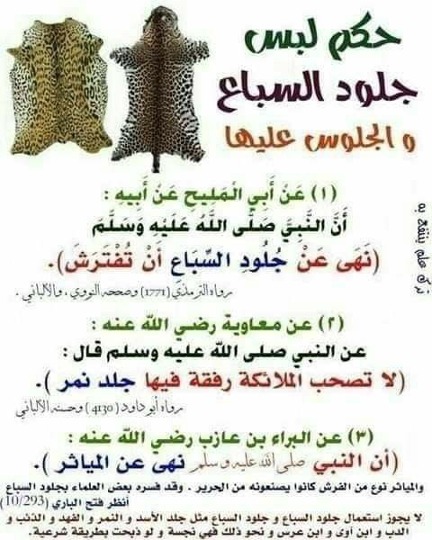 Pin By غاليه On اسلاميات Arabic Quotes Hadith Quotes