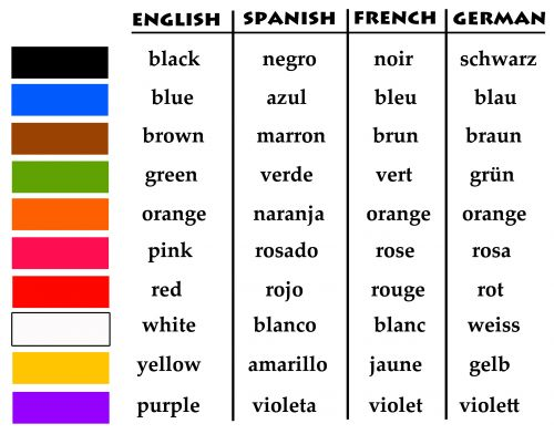 Which came first?! The French language or the English language?!?!?!?!?