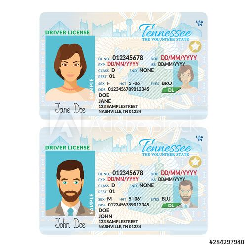Vector Template Of Sample Driver License Plastic Card For Usa Tennessee Plastic Card Templates Drivers License