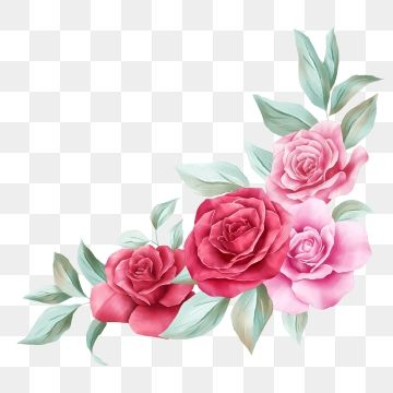 Floral Decoration For Wedding N Card Watercolor Flowers Illustration Of Red And Peach Roses Leaves Branches Composition Floral Clipart Flower Watercolor Png Watercolor Flower Illustration Flower Illustration Watercolor Flower Background