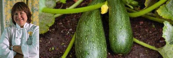 Salade de crevettes aux rubans de courgettes, aux herbes et aux épices par Anne Desjardins | equiterre.org - Pour des choix écologiques, équitables et solidaires