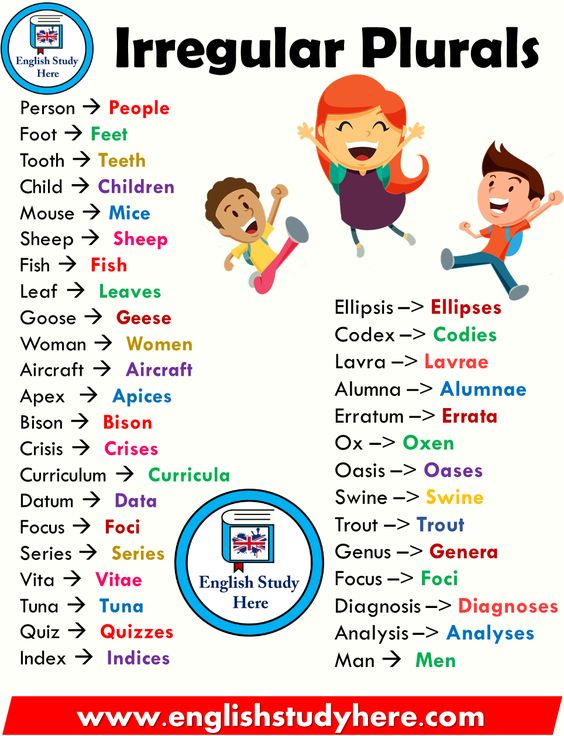 Irregular Plurals List in English - English Study Here