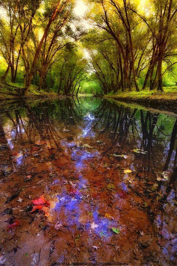 Río Potomac, en el norte del Condado de Loudoun, Virginia, EE.UU.