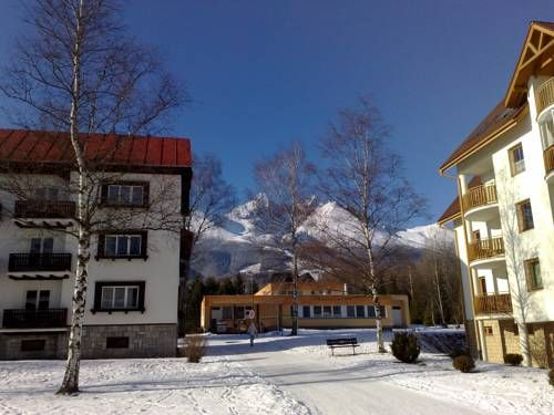 Apartment Gudi Tatransk� Lomnica Surrounded by the High Tatras National Park and set in the quiet part  of Tatransk? Lomnica village, Apartment Gudi offers a self-catered accommodation with free WiFi available in all areas. The nearest ski lift is reachable within a 15-minute walk.