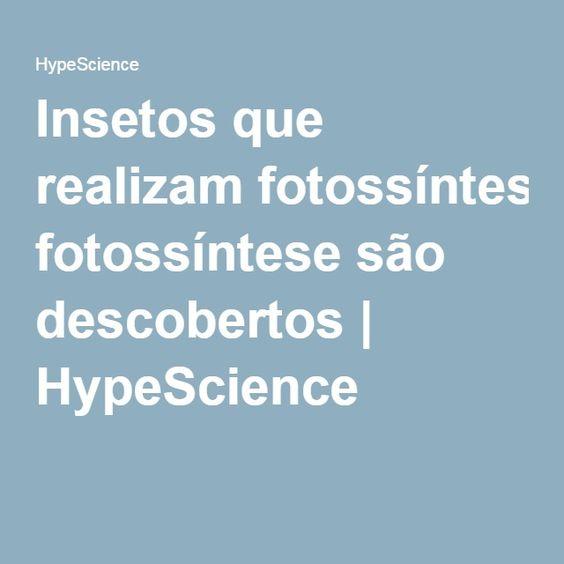 Insetos que realizam fotossíntese são descobertos | HypeScience