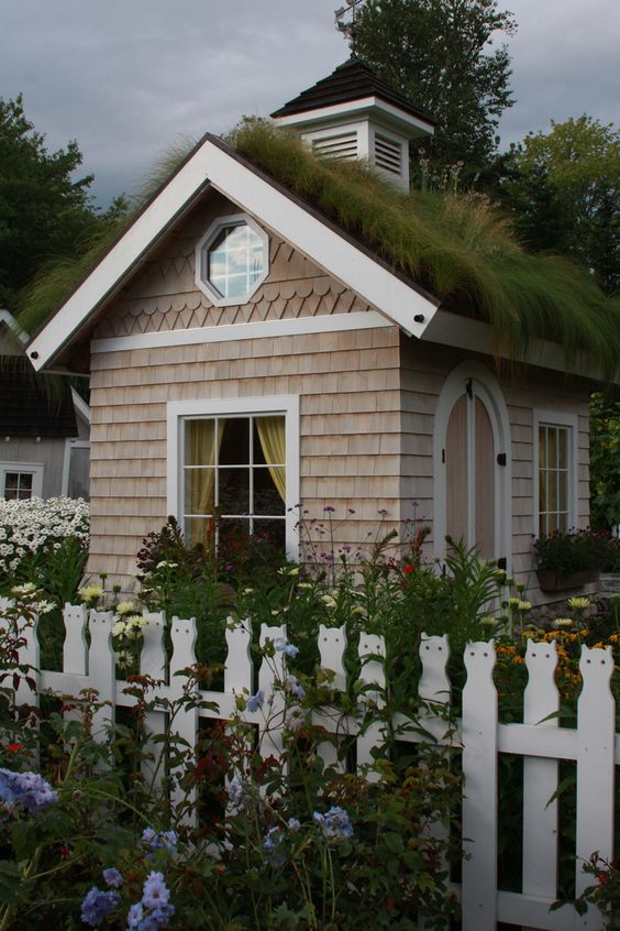 Gardens green roofs and picket fences on pinterest for Shed roof cottage