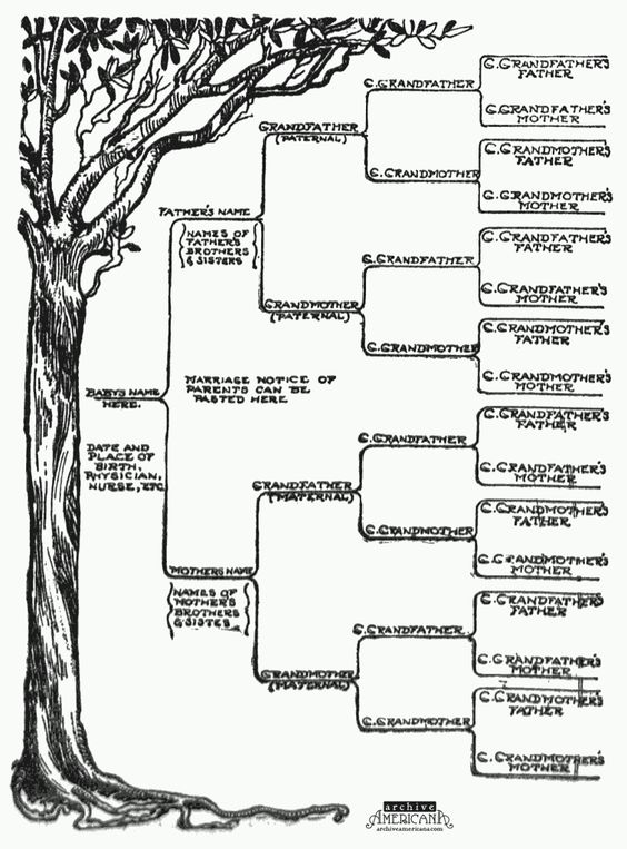 Start a genealogical record for your family (1905 Family tree
