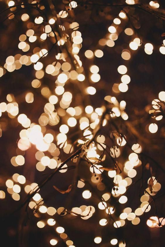Winter Led Fairy Lights Iphone8 Holiday Wallpaper Fall Wallpaper Christmas Lights Wallpaper