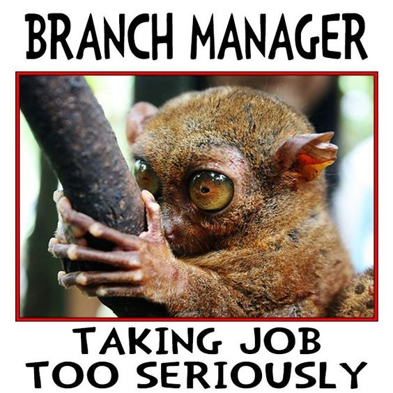 Branch Manager ...