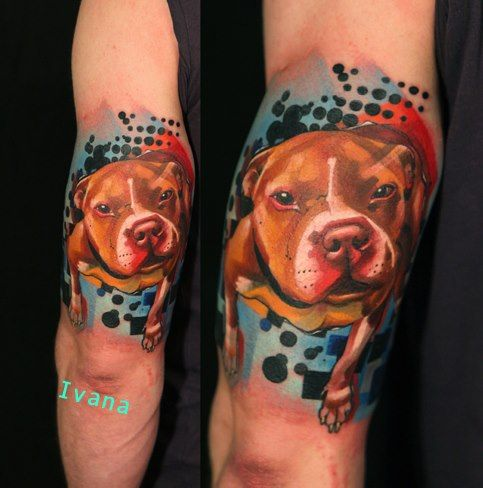 Color pit bull portrait by Ivana Belakova | Tattoos ...