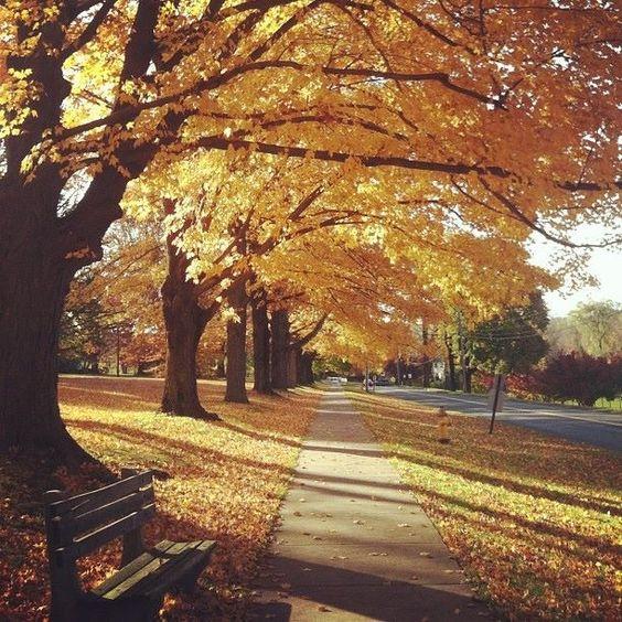 Ridgefield, CT on a beautiful fall day.