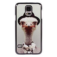 Ostrich Design Aluminium Hard Case for Samsung Galaxy S5 Min... – USD $ 5.99
