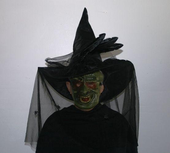 BLACK WITCH HAT VEIL SPIDERS FEATHERS  TARGET HALLOWEEN COSTUME  #TARGET...velvet...$17.99