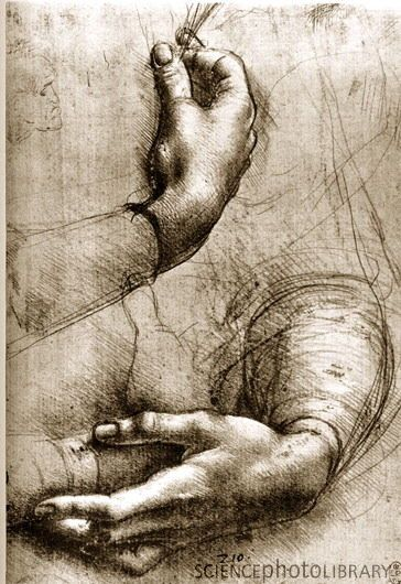 leonardo da vinci hands and drawings of  da vinci great attention to detail how did this guy shade