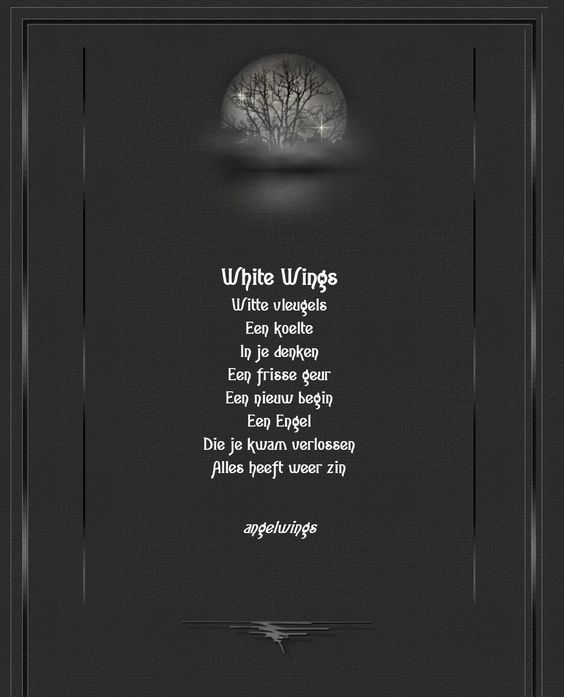 6b88d2409670420e635cb321ec35beab via Angel-Wings