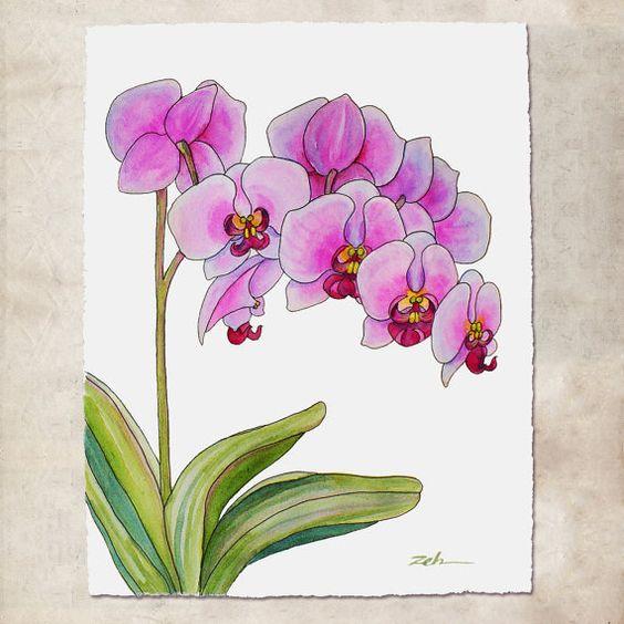 Orchid e peinture l encre et aquarelle art mural sans for Dessin mural peinture
