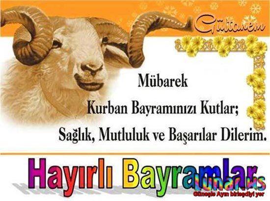 Qurban Bayrami Ile Ilgili Gorsel Sonucu Quotes Poster Movie Posters