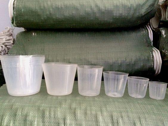 Chậu nhựa cứng - Chậu nhựa mềm - Chậu nhựa treo - 25