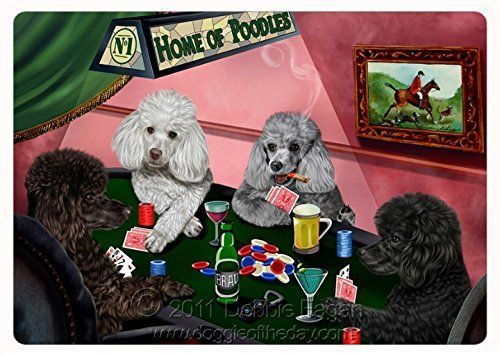 Poodle Confidence Artist Poodle Dogs Playing Poker Clever Animals