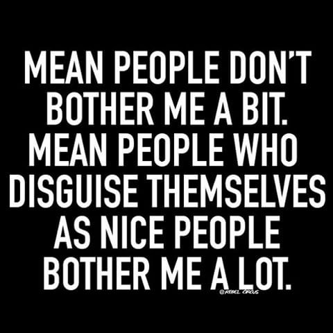 Mean People Who Disguise Themselves Sarcastic Quotes Funny Shady People Quotes Shady Quotes