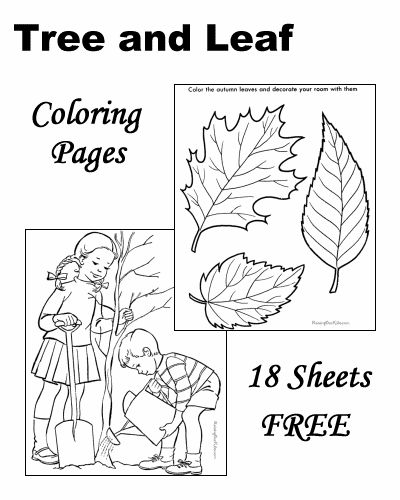 Tree Leaf Coloring Pages Coloring Pages Pinterest