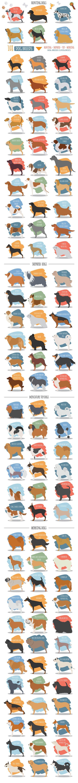 DOG breeds BIG set by design shop on @creativemarket