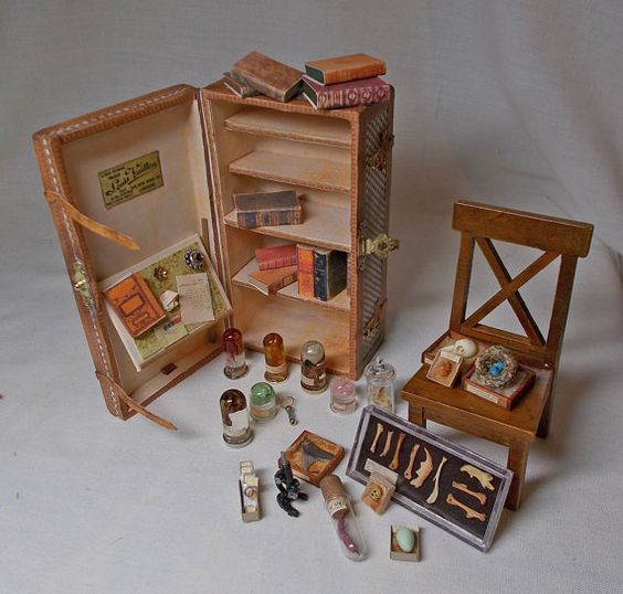 Dolls House Miniature Darwinian Filled Trunk / Museum / Collector's Collection