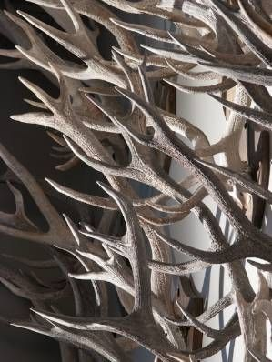 Stunning wall of overlapping antlers...