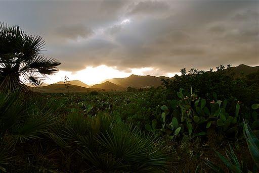 Campillo de los Genoveses, Parque Natural de Cabo de Gata
