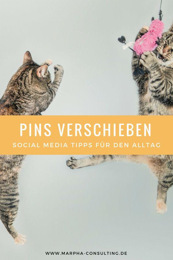 Erfahren Sie, wie Sie Ihre Pinterest-Pins auf andere Pinnwände und innerhalb von Pinnwänden verschieben bzw. neu anordnen können.