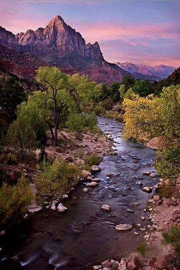 Watchman Tower standing guard over Virgin River - Zion National Park  -    photo by Dave Dilli