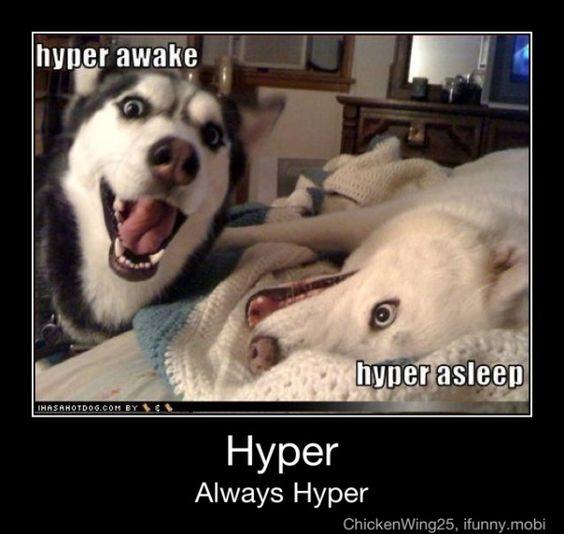 hyperhyperhyper