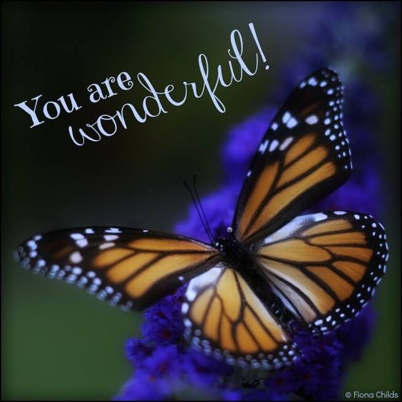 You Are Wonderful!