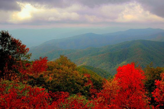 I regret, at times, that we did not move to the Smokey Mt. area of Tennessee, we gave it serious thought!  Maybe it is not out of the running for a later time!  LOVE this place!