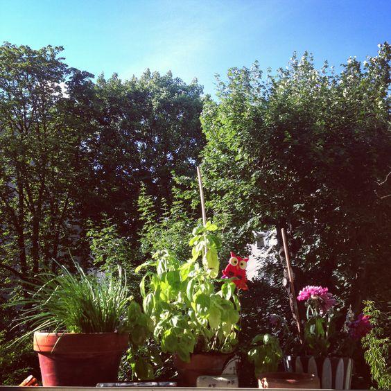 enjoying a blue sky in Berlin by Wesna Wilson