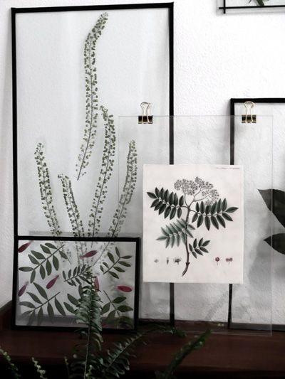 En estado de Rachel: Cuadros con hojas y flores prensadas: DIY (III)