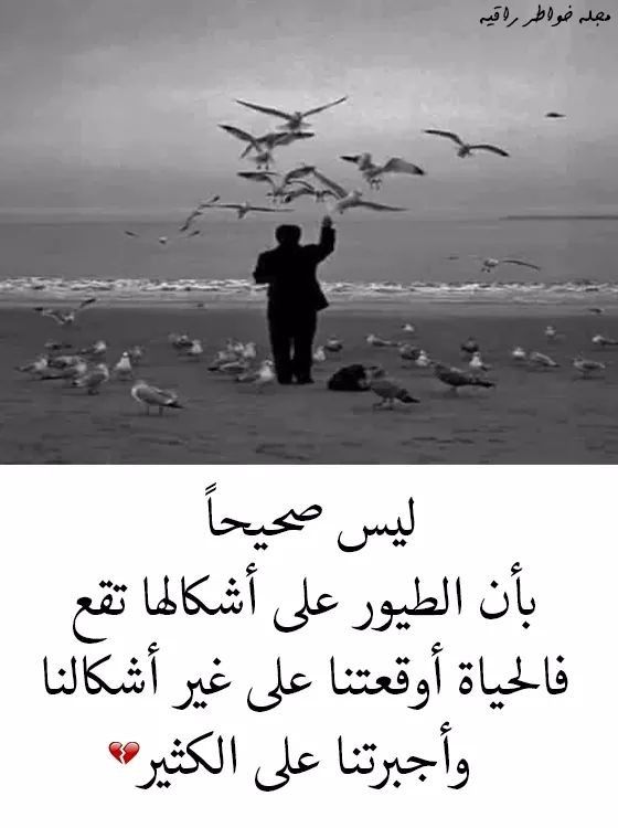 Pin By Love Bird On صدق Cool Words Love Words Quotations