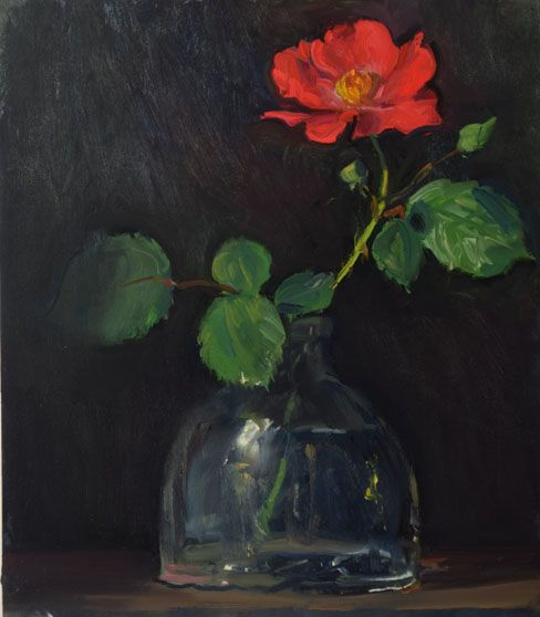 Pasture Rose Rose Painting Flower Drawing Floral Painting
