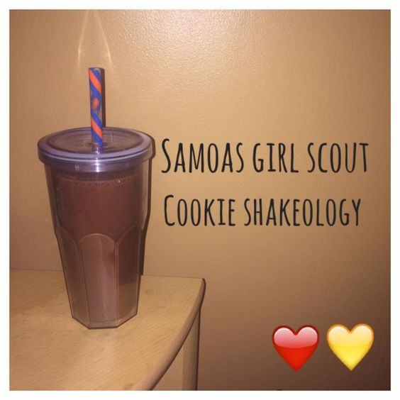 ... day fix 21 days samoa girl scouts scouts food diary diaries girls food