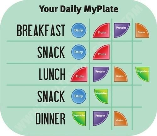 Your Daily Myplate Breakfast Lunch Dinner Snack Portion Serving