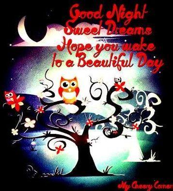 Good Night And Sweet Dreams Via My Cheery Corner Page On