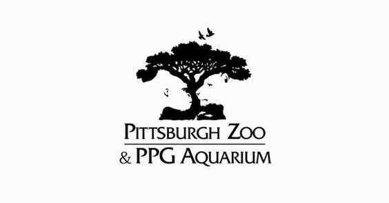 Prachtig logo met afbeeldingen van tijger en aap in de boom. #logo