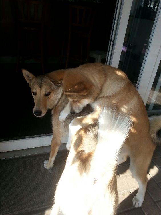 Kaija ontmoet moeder Kenza voor de eerste keer weer