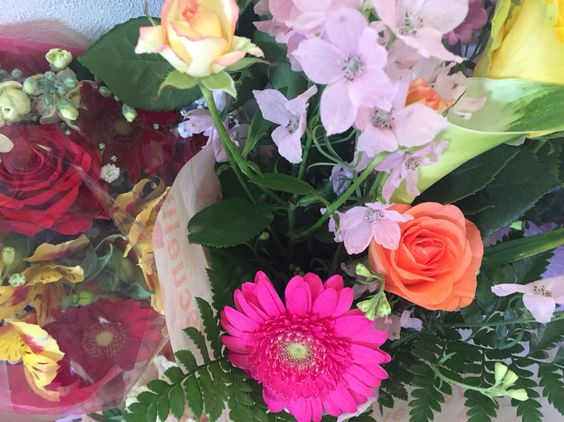My flowers 3.29.2016